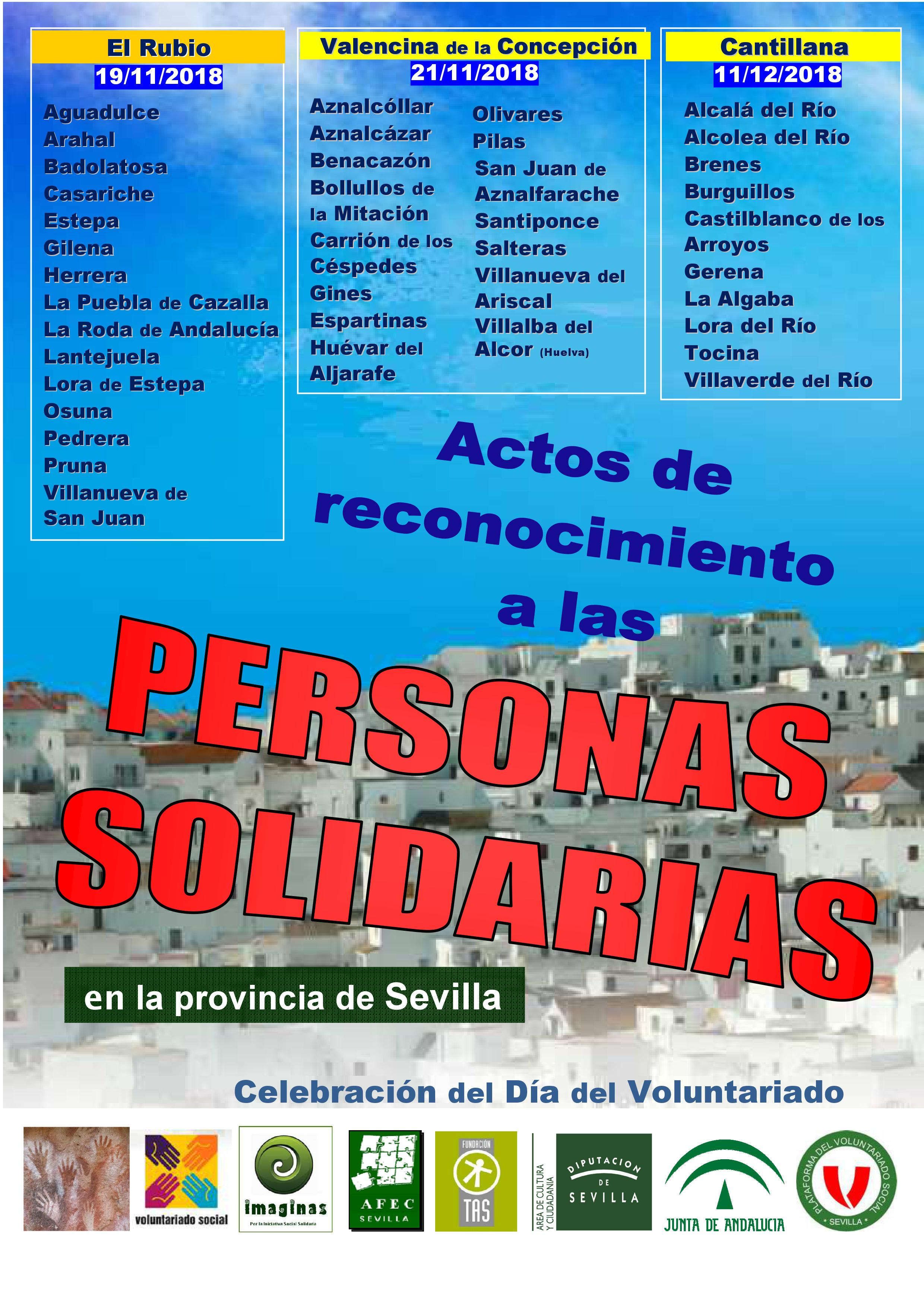 11-211118 DIA INTERNAC VOLUNTARIADO cartel 2