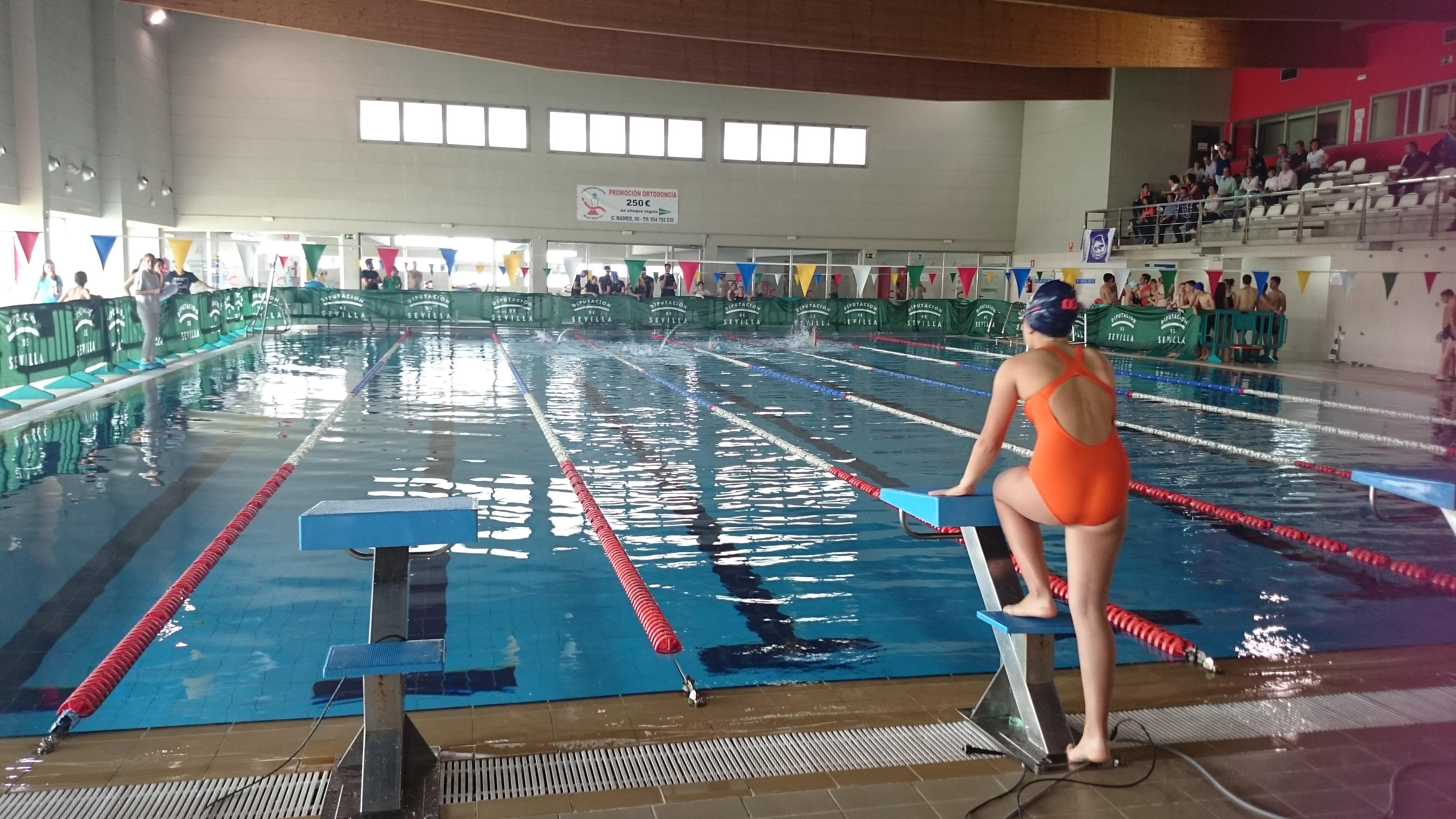 Circuito provincial nataci n invierno 1 jornada grupo 1 for Piscina la rinconada